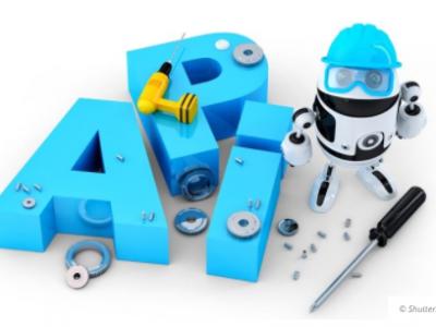 Siegeszug der APIS
